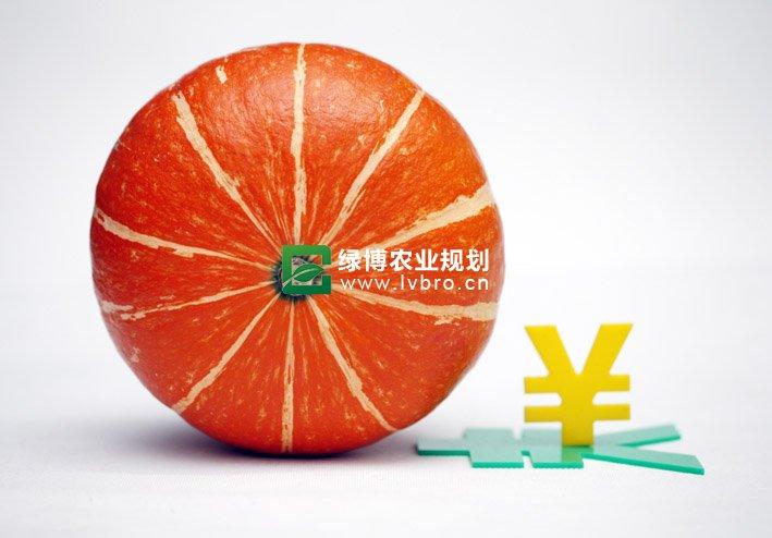 江苏出台多项金融支农政策缓解农民贷款难