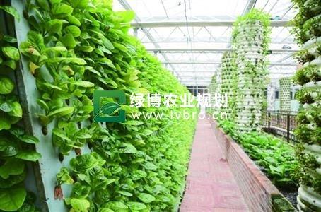 永阳打造现代农业示范园区规划建设