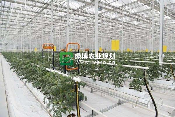 潍坊寒亭区国家现代农业产业园