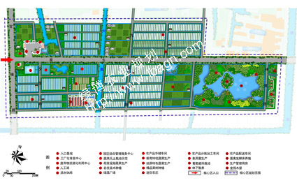 街头绿地设计平面图与分析