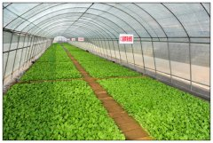 宣州省级农业示范区项目招商