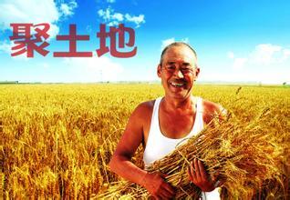 如何处理好新形势下农民和土地的关系