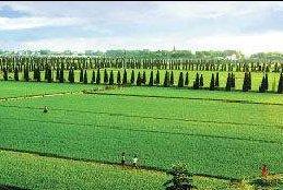 安徽省级现代农业示范园区名单